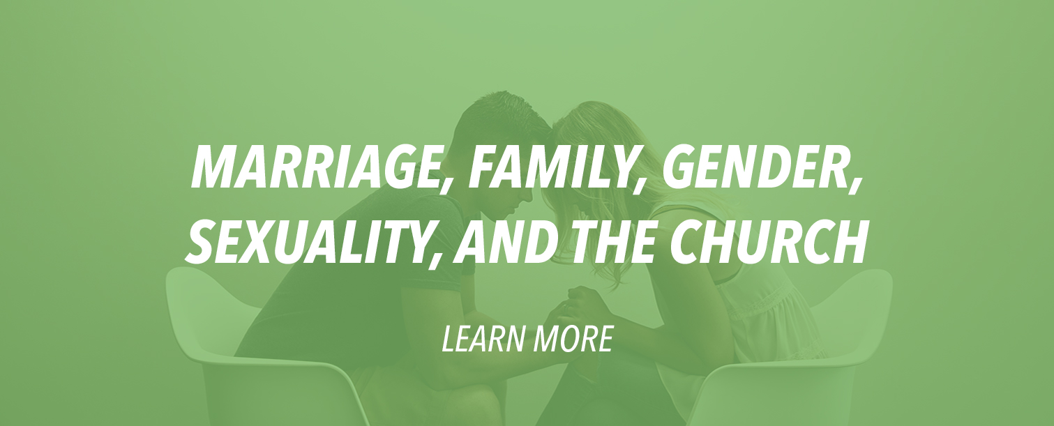 Marriage__Family__Gender__Sexuality__and_the_Church.jpg